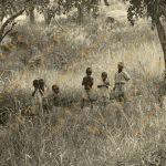 Aletheia_Zimbabwe_135