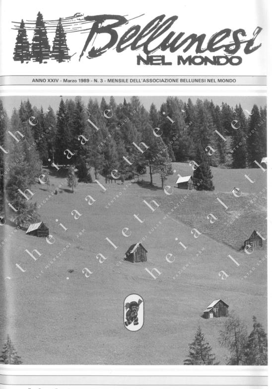 Bellunesi nel mondo n. 3 - marzo 1989
